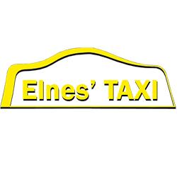 logo-elnestaxi